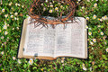 Black leather bible and thorn crown on a flower field Stock Images