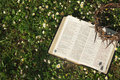 Black leather bible and thorn crown on a flower field copy space Stock Photos