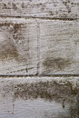 Black mold on basement wall concrete covered in Stock Images