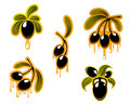Black olives symbols set with oil for food design Royalty Free Stock Photos