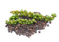 Black peppercorn and bunches of fresh green pepper isolated on white background Stock Image