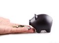 Black piggy bank with money Royalty Free Stock Image