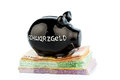Black piggy bank on money banknotes symbolic photo for tax fraud and laundering Royalty Free Stock Photo
