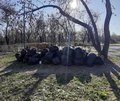 stock image of  Black plastic garbage bags in the park, spring cleaning. Leaves and garbage in the bags