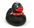 Black Plastic Toy Duck Royalty Free Stock Photo