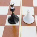 Black quinn and white pawn on chess board Stock Photos