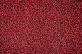 Black red carpet floor pattern texture swirl Royalty Free Stock Photo