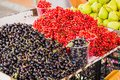 Black and red currants Royalty Free Stock Photo