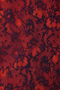 Black and red floral  lace texture Stock Image