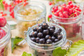 Black red white currants gooseberries cherries jars preparations Royalty Free Stock Photo