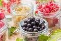 Black red white currants gooseberries cherries jars preparations Royalty Free Stock Photo