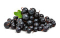Black ripe currants Royalty Free Stock Photography