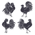Black Rooster Silhouettes  on White. Royalty Free Stock Photo