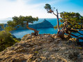 Black sea coastline in crimea ukraine Royalty Free Stock Image