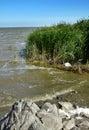 Black Sea shore Stock Image