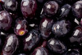 Black seedless grapes background texture of several fresh Stock Photography