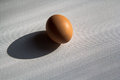 Black shadow and background egg Royalty Free Stock Photo