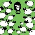 Black sheep of the family Royalty Free Stock Photo