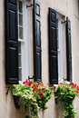 Black shutters on a cream building with flowing planter boxes in Charleston, South Carolina. Royalty Free Stock Photo