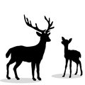 Black silhouette Deer and Fawn white background Royalty Free Stock Photo