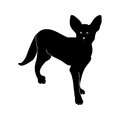 Black silhouette of a dog on a white background