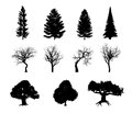Black silhouettes illustrations of different trees