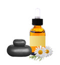 Black spa stones, bottle with essence oil and chamomile flowers Royalty Free Stock Photo