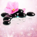 Black spa stones and flower on colorful background pink spring Royalty Free Stock Photo