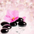 Black spa stones and flower on colorful background pink spring Royalty Free Stock Photos