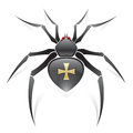 Black spider Royalty Free Stock Images
