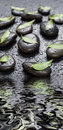 Black stones and green leaves, covered with water drops Royalty Free Stock Photo