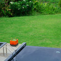 Black swimming pool in green grass garden Royalty Free Stock Photo