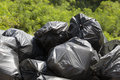 Black trash bags nature Stock Images
