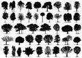 Čierny strom