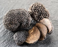 Black truffles and truffle slices. Royalty Free Stock Photo