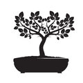 Black Vector Tree. Illustration of Bonsai. Royalty Free Stock Photo