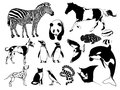 Black and white animals vector illustration of drawn in style Royalty Free Stock Image
