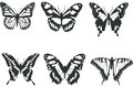 Black and white butterflies Stock Photography