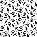 Black And White Cat, Paw Print...