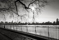 Black and white cityscape in winter manhattan skyline new yo photograph of york urban view photo taken from the reservoir central Stock Photos
