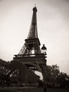 Black and white eiffel tower in paris france photo of the with people walking between the trees below Royalty Free Stock Photo