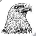 Black and white engrave isolated eagle vector illustration Royalty Free Stock Photo