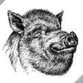 Black and white engrave isolated pig vector illustration Royalty Free Stock Photo