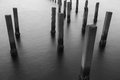 Black and white of fence protect sandbank from sea wave nature protection Royalty Free Stock Images