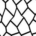 Black and White Fragmentation Background
