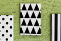 Black and white geometric canvases geometrical painted hanging on green wall Stock Photo