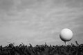 Black and white of golf ball on tee Royalty Free Stock Photo