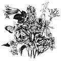 Black and white hand drawn garden flowers