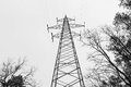 Image : Black and white. High pole mains. Electricity. High voltage network. screwdrivers  wooden