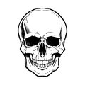 Black and white human skull with jaw a lower Stock Photos